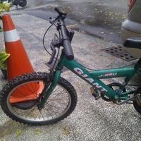 20吋5段變速 捷安特GIANT J250 二手兒童車/二手兒童腳踏車/童車二手單車二手自行車