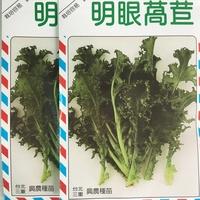 【國輝老爹】興農明眼萵苣種子40元/包.原封小包裝又稱菊苣種子.種子無藥劑處理全年栽培容易(蔬菜種子)