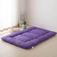 90x200cm Breathable Thicken Winter Warm Mattress Foldable Tatami Mattress Pad Sleeping Rug Bedroom and Office Lazy Bed Mats
