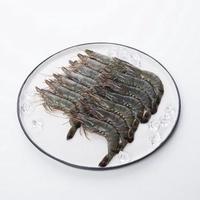 馬來西亞活凍草蝦14隻裝-波比元氣生活網