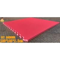 (黃金屋)EVA外銷訂製繽紛地墊105*105*2.5公分 遊戲墊 巧拼 床墊 運動墊 睡墊 baby爬行首選 防水|