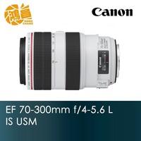 [公司貨] Canon EF 70-300mm f/4-5.6 L IS USM 胖白 70-300【鴻昌】