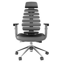 🚚 Ergonomic Office Chair
