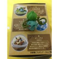 神奇寶貝 妙蛙種子 球盆 盆景球 指偶 公仔 精靈寶可夢 pokemon