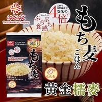 日本 Hakubaku 黃金糯麥 600g 大麥 穀物飯