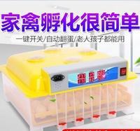 威振全自動孵化機小型家用型迷你孵化器小雞蛋孵化箱雞鴨鵝孵蛋器HM 時尚潮流