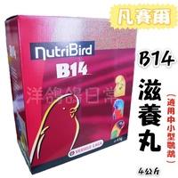 《凡賽爾B14滋養丸 4公斤盒裝》中小型鸚鵡滋養丸、小型鸚鵡滋養丸、B14滋養丸、滋養丸、鸚鵡飼料、鳥飼料、鳥用保健品