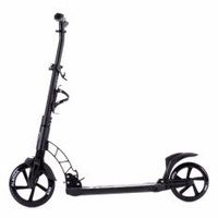 Aleoca Alloy Kick Scooter AST7334 (Black)