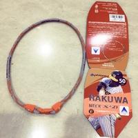 日本銀谷 Phiten RAKUWA X50 液化鈦項鍊 項圈  50cm