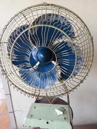 [台灣製造] 傳統 復古14吋 順風牌 電風扇 古董電扇