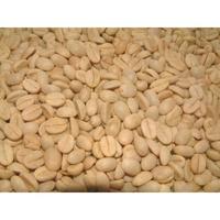 【阿拉比卡品種咖啡種子】可種小品盆栽.樹苗~綠化家園***一份100顆80元
