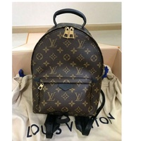Lv Backpack Pm