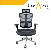 FLY Luxury Ergonomic Office Chair (Black)