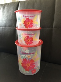 Tupperware blossom one touch container (3)