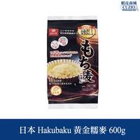 日本 Hakubaku 黃金糯麥 600g