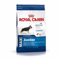 Royal Canin - Maxi Junior DRY DOG FOOD