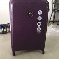 Delsey Paris Luggage- (Violet & Dark Blue)
