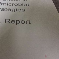 NUS LSM4223 Advances in Antimicrobial Strategies Complete set of 4 Lab Reports