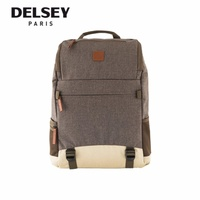 [INSTOCKS] Delsey Maubert 14-inch Laptop Backpack in Grey