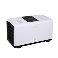 Air Purifier With Double Filter HEPA Freshener Filter Smoke Dust Remover Home
