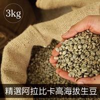 精選雲南咖啡豆 阿拉比卡生咖啡豆生豆AA級/3kg