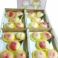 2019年【非桃不可】梨山水蜜桃~~FB社團預購目前已經額滿囉!