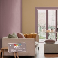Dulux Colour Play Tester Colour Of The Year 2018