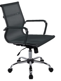 Sheldon Ergonomic Stylish Executive Office Mesh Chair