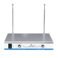 Professional 2 Channel 2 Cordless Handheld Mic UHF Wireless Microphone System