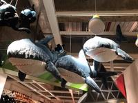 【現貨】 🇸🇪 IKEA新品 BLÅHAJ填充玩具, 鯊魚