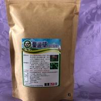 憂遁草(沙巴蛇草)茶包