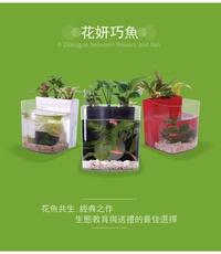 [第一佳 水族寵物] 花魚共生寵物缸 [黑] (花妍巧魚) 花魚共生新主張 迷你小魚缸 / 水族箱