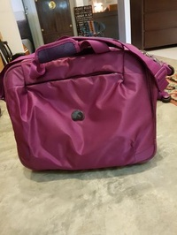 Delsey carry on luggage in attractive colour