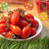 【鮮果日誌】玉女小番茄(10盒入原箱)