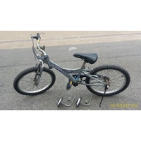 GIANT 捷安特  YJ250 20吋 兒童腳踏車(含輔助輪)