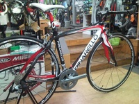 全新,Pinarello FP3 Carbon 公路車車架, Size: 53