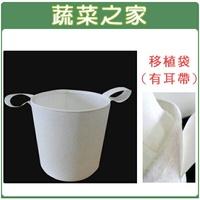 【蔬菜之家005-A38-12】移植袋.美植袋1尺2(有耳帶)//型號PB12