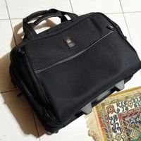delsey travel bag. cabin. pilot bag