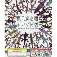 yujin扭蛋 原色爬蟲類 蜥蜴圖鑑 絕版 小全套23種