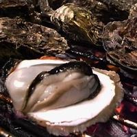 【澎湖牡蠣(12人份)-約9000g/組-1組】天然無汙牡蠣低溫商品澎湖產地直送-2501001
