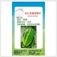 A85.青羅蔓種子(青羅美生菜)4克(約4000顆)