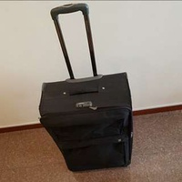 Attractive Eminent Luggage