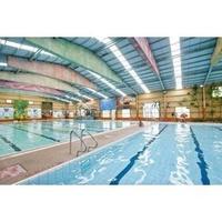 新莊區新樹路溫水室內室外游泳池