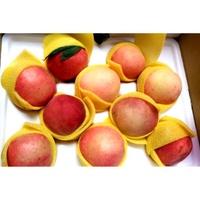 梨山水蜜桃禮盒包裝