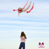 🔥4m Outdoors Chinese Traditional Dragon Kite Plastic Foldable Children Toys