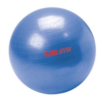 AIBI Gym Ball