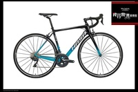 2019 HASA RS2  (GIANT CONTEND SL 2 TCR ADVANCED 2 )
