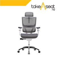 Vision Ergonomic Office Chair (White)