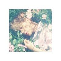 [WTT]BTS Love Yourself Photocard Trade - Jimin