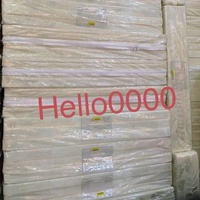 Seahorse foldable mattress